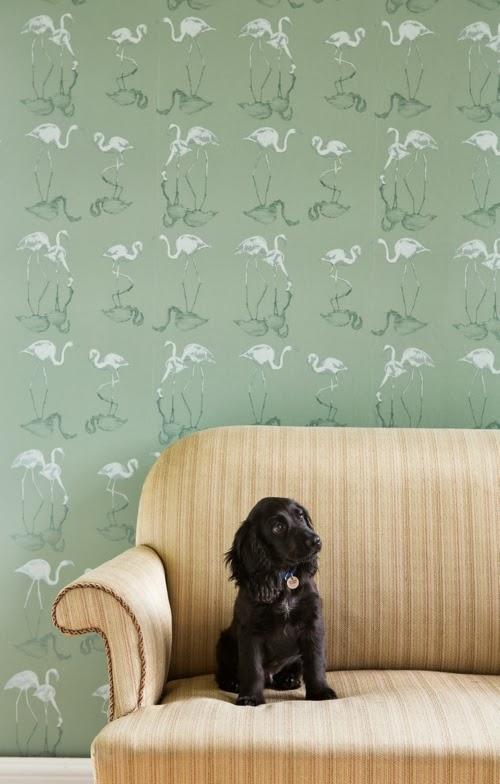 Juliet Travers Designer Wallpaper | Lifestyle photoshoot